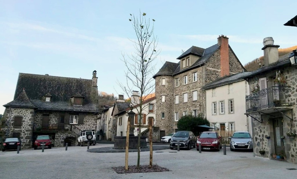 plantation place de l'église